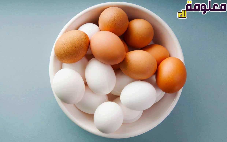 تفسير حلم رؤية البيض في المنام للمتزوجة والعزباء